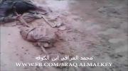 به درک واصل شدن امیر داعش در الانبار عراق !
