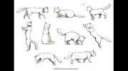 نحوه کشیدن گربه