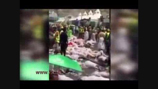 فیلمی دلخراش از فاجعه منا در عید قربان 1394