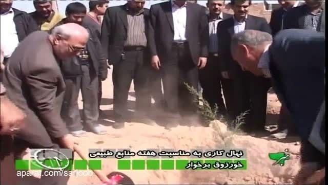 نهال کاری و برپایی جشنواره سفره هفت سین در خورزوق