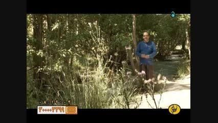 گزارشی از محله قتلغشاه اسفرجان