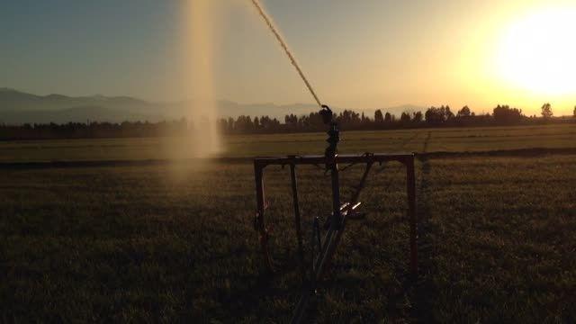 آبیاری مصنوعی توسط دستگاه باران مصنوعی  ( باور )