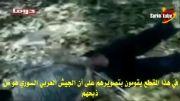 کفار سلفی وهابی(5)