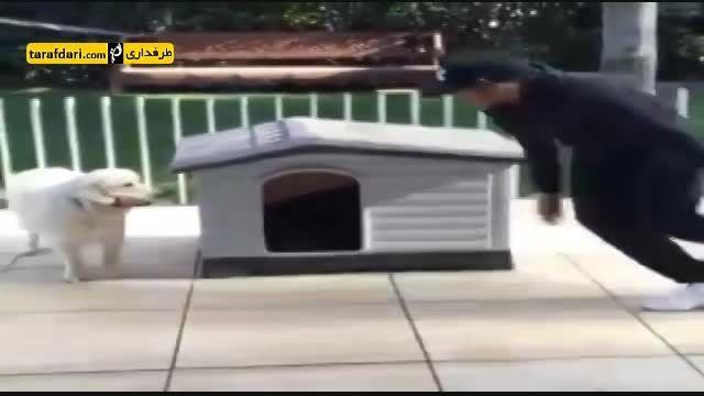 وقتی نیمار سر به سر سگش می گذارد