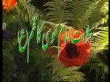 ورده و ریحانه / ولادت امام موسی کاظم(ع)