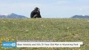 خبر کشته شدن مرد 31 ساله توسط خرس مهربان