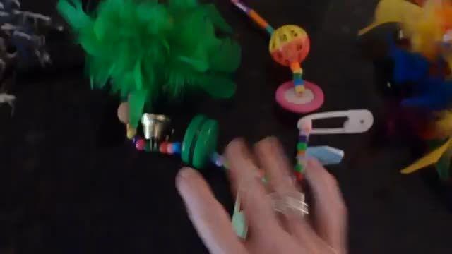 اسباب بازیهای دست ساز خانگی طوطی