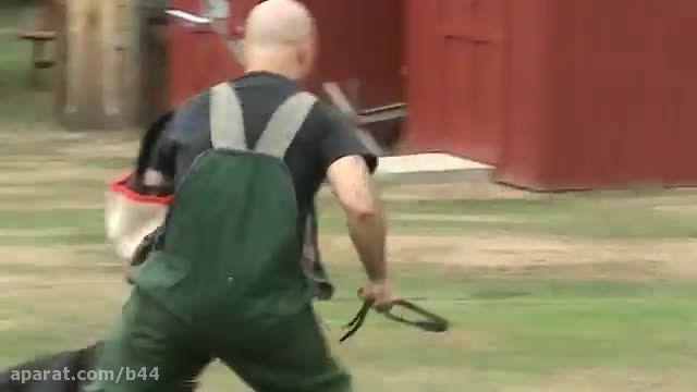 حفاظت سگ ژرمن شفرد از صاحب خردسالش در برابر حمله مهاجم