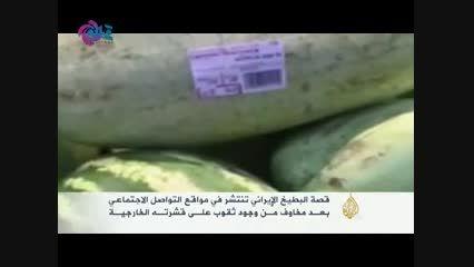 تلافی شکست در یمن بر سر «هندوانه ایرانی» درآمد