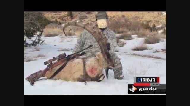 برخورد قاطع سازمان محیط زیست با شکارچیان غیرمجاز