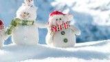 زمستان را با آهنگ ملایم و آرامش بخش تجربه کنید