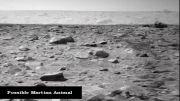 کشف نشانه های حیات در مریخ توسط ناسا در سال 2012