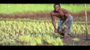 تیزر روایت عهد 37(امنیت غذایی در حوزه خاک و کشاورزی)