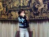 محمد جواد فصیحی.سید جواد ذاکر کوچک.حتما ببین نبینی ضرر کردی.