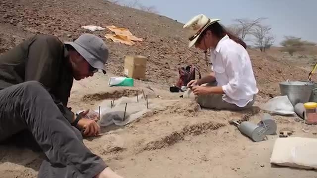 ابزار سنگی ۳.۳ میلیون ساله