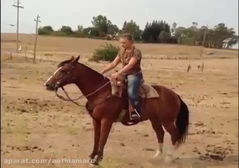 حمله اسب عصبانی به دختر!