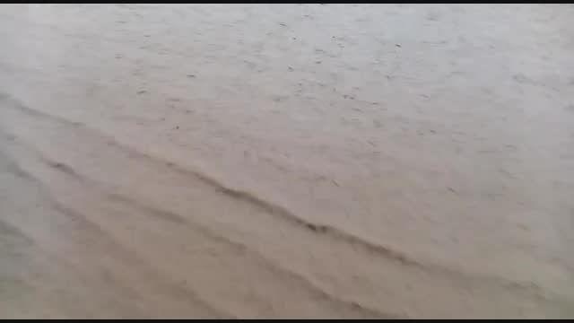 بارش باران و جاری شدن سیل در ایلام