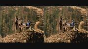 قسمت کوتاه فیلم سه بعدی  2012 3D