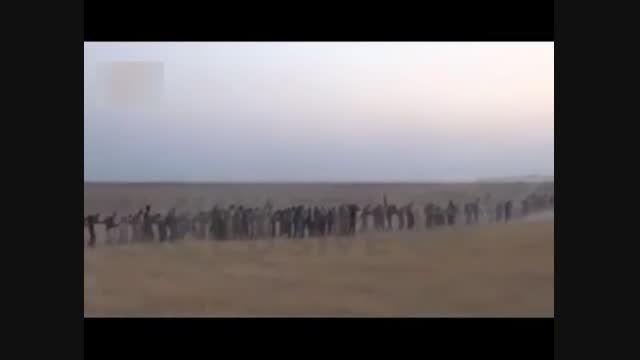 به دام انداختن صدها داعشی خارجی در الانبار