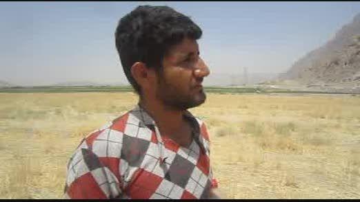 گزارش اشتغال زایی بهزیستی سپیدان