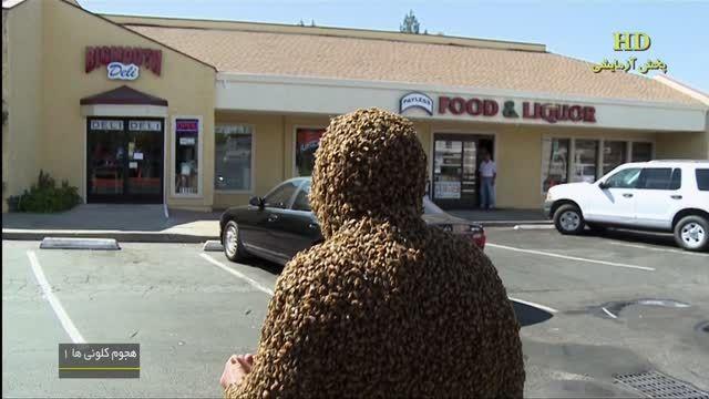 صد هزار زنبور روی تنشن نشسته - ترسوها نبینن