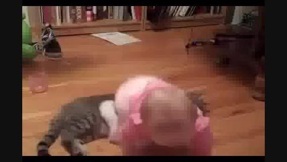 دوستی بچه با گربه- خیلی خیلی باحاله حتما ببینیدش