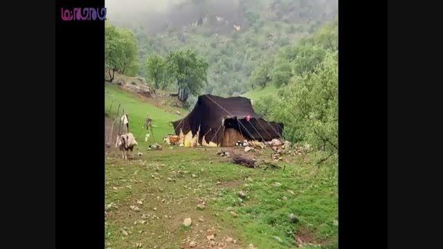 سفری کوتاه به گوشه و کنار ایران+فیلم ویدئو کلیپ+گردشگری