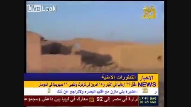 تلفات سنگین داعش