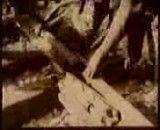 فیلم قدیمی پل ورسک
