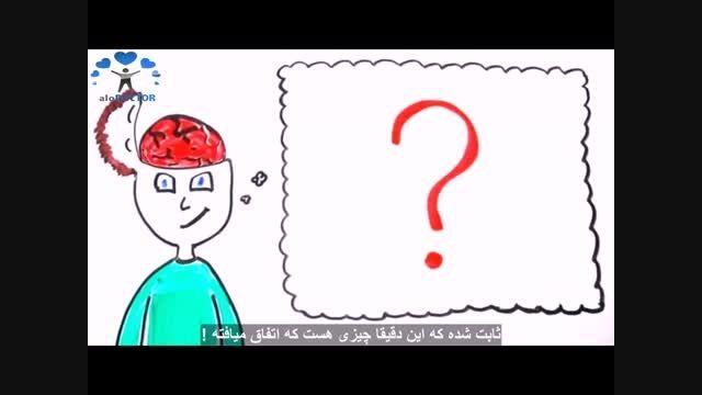 مغزتان را بهتر بشناسید !