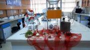 تبریک سال نو از طرف ربات NAO -کاری از آزمایشگاه تعامل انسان و ربات (تار)-دانشگاه تهران