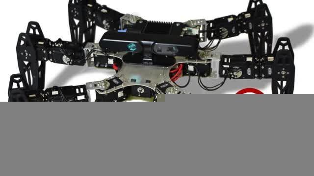 ربات مجروح / بیتلاگ