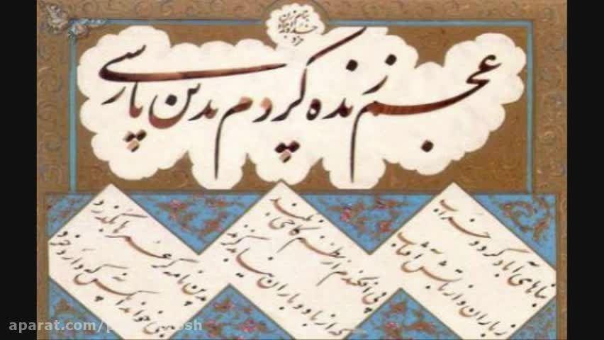 زبان ترکی زبان سوم دنیا و زبان فارسی لهجه سی و سوم عربی
