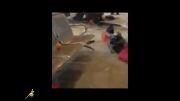 فیلم حادثه دیدگان فرودگاه جده(+16