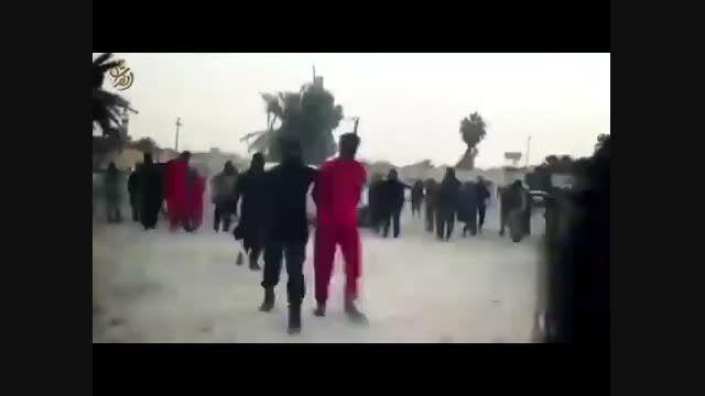داعش بازهم جنایت آفرید + ویدئو