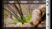 تصاویر بهاری روستای قطرم
