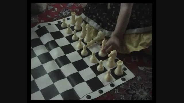 چیدن شطرنج توسط هلیا لشگری در 2 سالگی