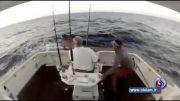 ترس ماهیگیر