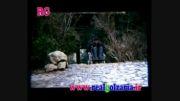 فیلم محمدرضا گلزار و گلشیفته فراهانی «فیلم زمانه»