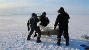 نصب دوربین و ردیاب ماهواره ای برای مراقبت از خرس قطبی