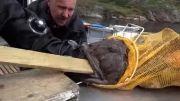 ماهیگیر روسی خودش شکار ماهی روسی شد!