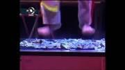 علی درودیان شعبده باز حاضر در جشنواره مجریان و هنرمندان