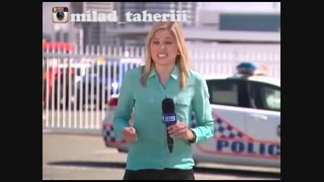 حشره مجری را در اجرای زنده نیش زد