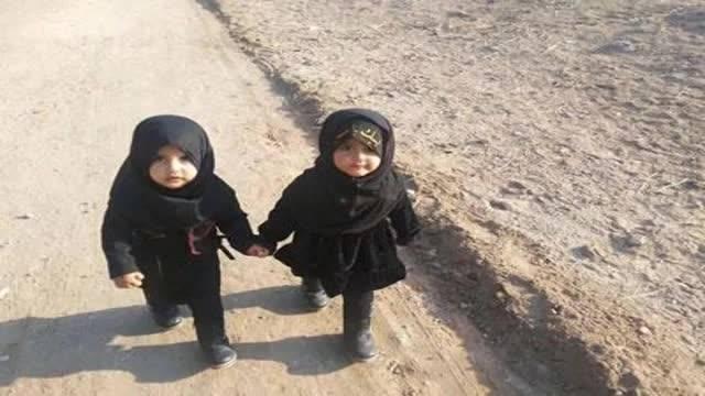 تصاویر پیاده روی اربعین حسینی