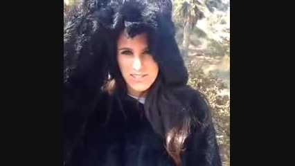حمله خطرناك خرس قلابی