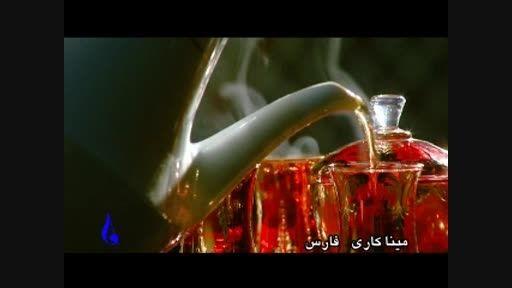 شوق زندگی (میناکاری فارس)