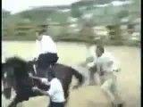اسب هم به اردوغان سواری نداد