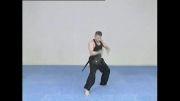 تریلر آموزش حرکات نمایشی هنر های رزمی