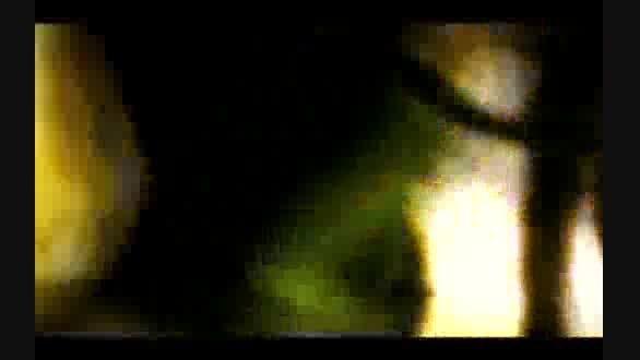 """تصاویر لو رفته از شکنجه های سازمان جاسوسی آمریکا""""سیا"""""""