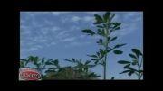 تأیید کود مینرال تکسا توسط دکتر زند کارشناس زراعت جهاد